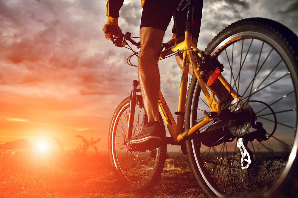 10 Best HITCH Bike Racks in 2019